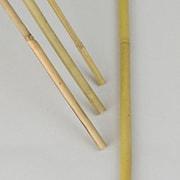 bambukpp-100cm--10st-1
