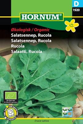 rucola-organic-1