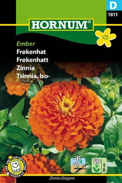 Zinnia, Ember