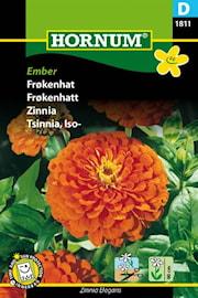 zinnia-ember-1