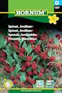spenat-jordgubbs--1