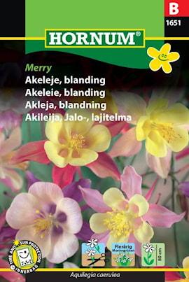 akleja-blandning-merry-1