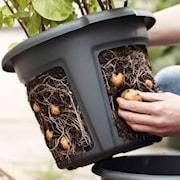 green-basics-potatiskruka-33cm-living-black-1
