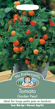krsbrs--tomat-garden-pearl-1
