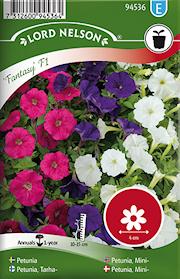 petunia-fantasypicobella-f1-1