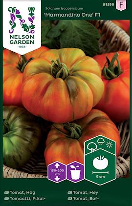 tomat-hg-marmandino-one-f1-1