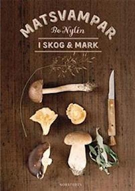 matsvampar-i-skog-mark-1