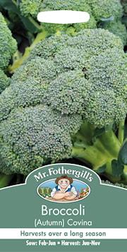 broccoli-hst-covina-1