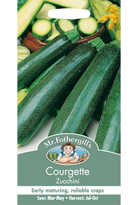 sommarsquash-zucchini-1