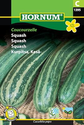 squash-coucourzelle-1