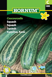 squash-coucourzelle-1