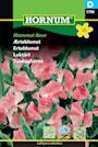 luktrt-mammut-rose-1