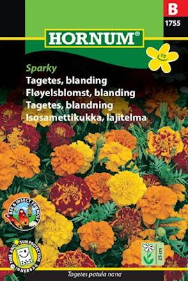 tagetes-blandning-sparky-1