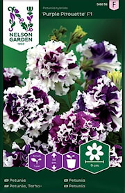 petunia-purple-pirouette-f1-1