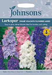 romersk-riddarsporre-dwarf-hyacinth-flowered-1