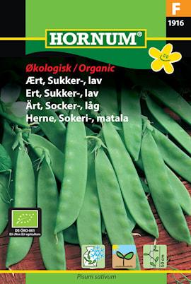 rt-socker--lg-norli-organic-1