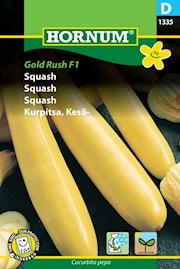 squash-gold-rush-f1-1