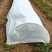 odlingsvxttunnel-5m-1