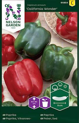 paprika-california-wonder-rd-1