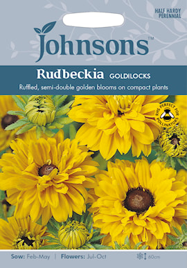 sommarrudbeckiagoldilocks-1