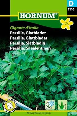 persilja-sltbladig-gigante-ditalia-1