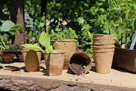 planteringskruka-kokosfiber-8cm-5-p-1