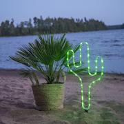 ljussiluett-tuby-kaktus-1