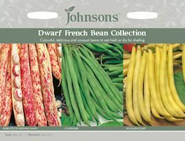 brytbna-dwarf-french-bean-collection-3-sorter-1