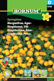 ringblomma-ker--springtime-1