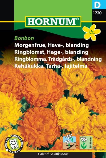 Ringblomma, Trädgårds-, blandning Bonbon
