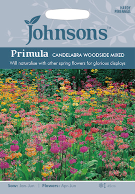 primula-candelabra-woodside-mixed-1