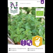 oregano-kungsmynta-organic-1