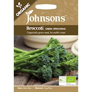 broccoli-green-sprout-organic-1
