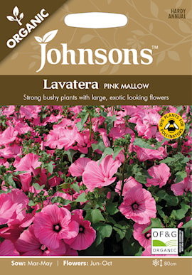 malva-sommar--pink-mallow-organic-1