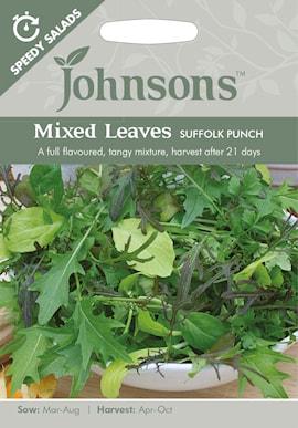 sallad-sp-mixed-leaves-suffolk-punsch-1