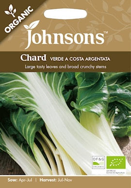 mangold-verde-a-costa-argentata-organic-1