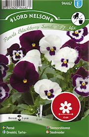 pens-panola-blackberry-sundae-mix-1