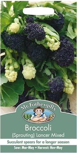 broccoli-lancer-mix-1