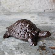 jrn-skldpadda-10-x-14-x-5hcm-1