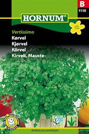 krvel-vertissimo-1