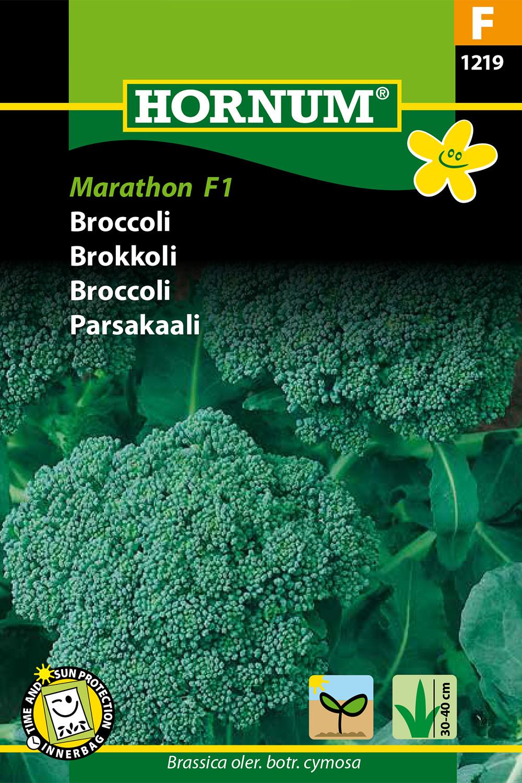 Broccoli 'Marathon' F1