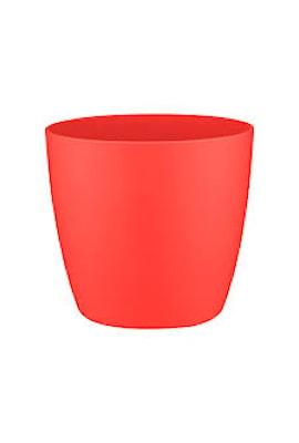 brussels-kruka-mini-7-cm-poppy-red-1