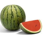 vattenmelon-edom-mountains-f1-105cm-kruka-1