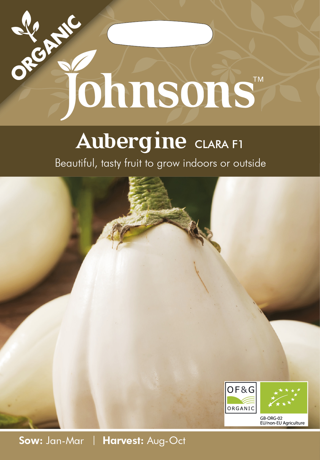 Aubergine 'Clara F1' Organic