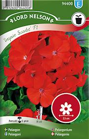 pelargon-inspire-scarlet-f1-rd-1