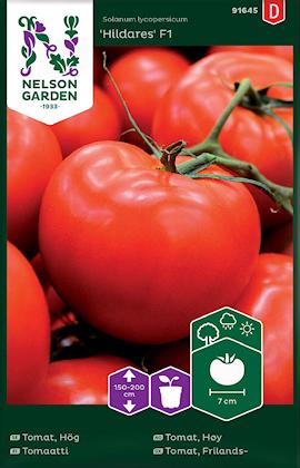 tomat-hg-hildares-f1-1