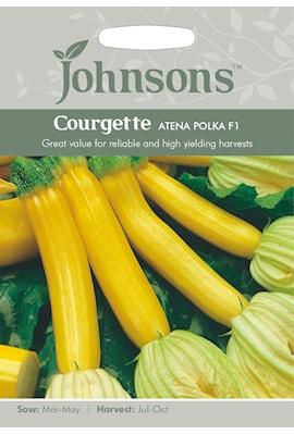 zucchini-atena-polka-f1-1