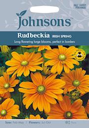 sommarrudbeckia-irish-spring-1