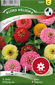 zinnia-sunbow-bl-frger-1