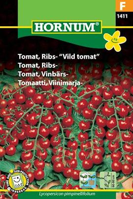 tomat-vinbrs--1